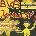 BVB Junior 1: Eine spannende Erlebnisreise durch die Geschichte von Borussia Dortmund Hörspiel von Bruno Knust, Georg Kunoth Gesprochen von: Bruno Knust, Jürgen Uter, Jane Franklin,  Günnas Fan-Chor