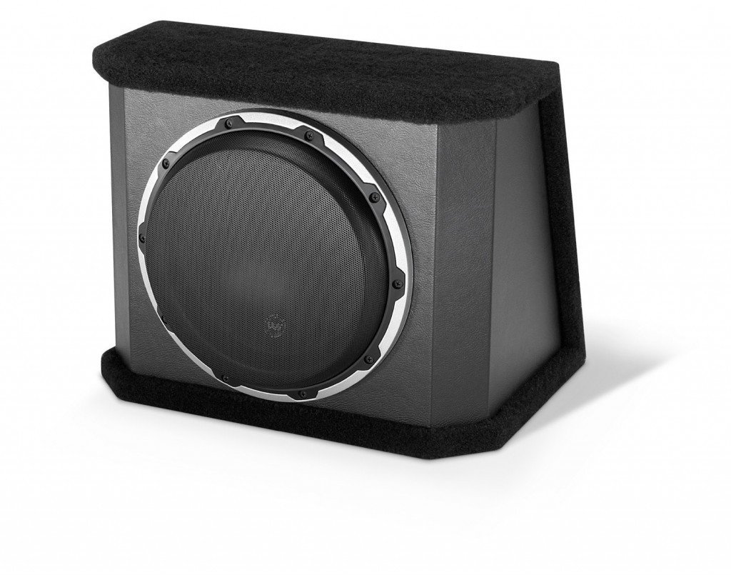 10W6V2 10-Inch Subwoofer with Dual 4 Ohm Voice Coils: Amazon.ca: Electronics