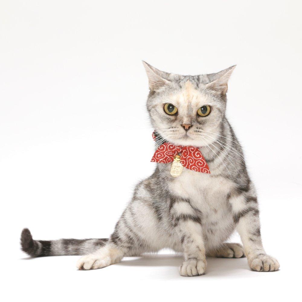 Necoichi Ninja Cat Collar (Red) by Necoichi