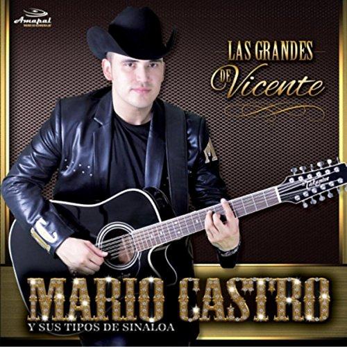 Botas de Charro: Mario Castro Y Sus Tipos De Sinaloa: MP3 Downloads