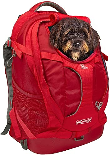 Kurgo-Dog-Carrier-Backpack-for-Small-Pets