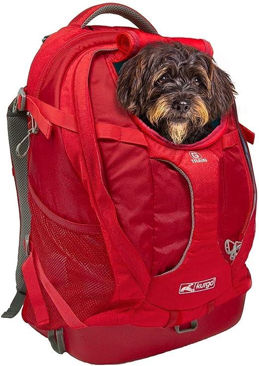 Kurgo G-Train Perros Pequeños y Gatos-Portador Mascotas-Aprobado por Aerolíneas-Mochila para Gato-Ideal para Viajes y Excursiones-Base Impermeable Chili, Rojo Pimiento: Amazon.es: Productos para mascotas