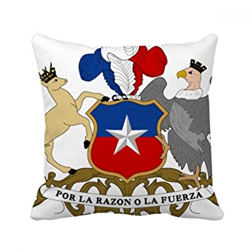 Amazon.com: DIYthinker Chile National Emblem Country Throw ...