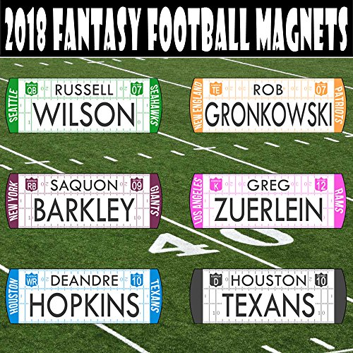 The Draft Party Fantasy Football Draft Player Names - NEW 2018/19 MAGNETIC/MOVABLE - Use with TheDraftParty Fantasy Draft Board by The Draft Party