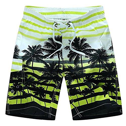 Newland Men's Colorful Stripe Coconut Tree Beach Shorts Swim Trunks Green 35-36 waist