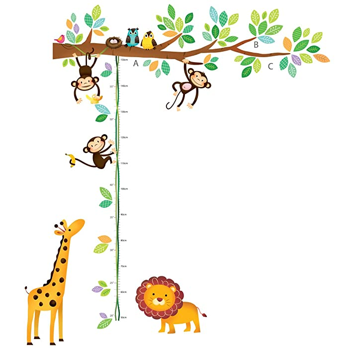 Top 10 Kid Height Measurement Wall Decor Stickers Books