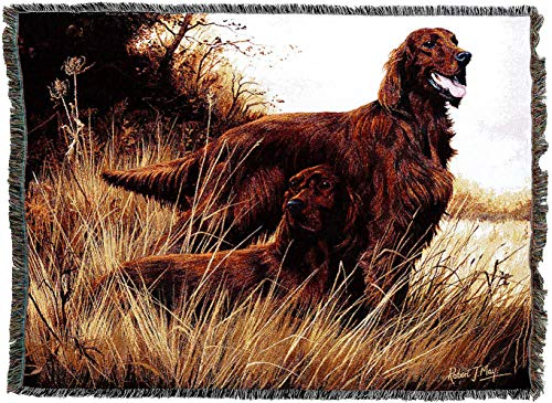 Pure Country Weavers - Irish Setter Dog Woven Tapestry Throw Blanket with Fringe Cotton USA Size 72 x 54
