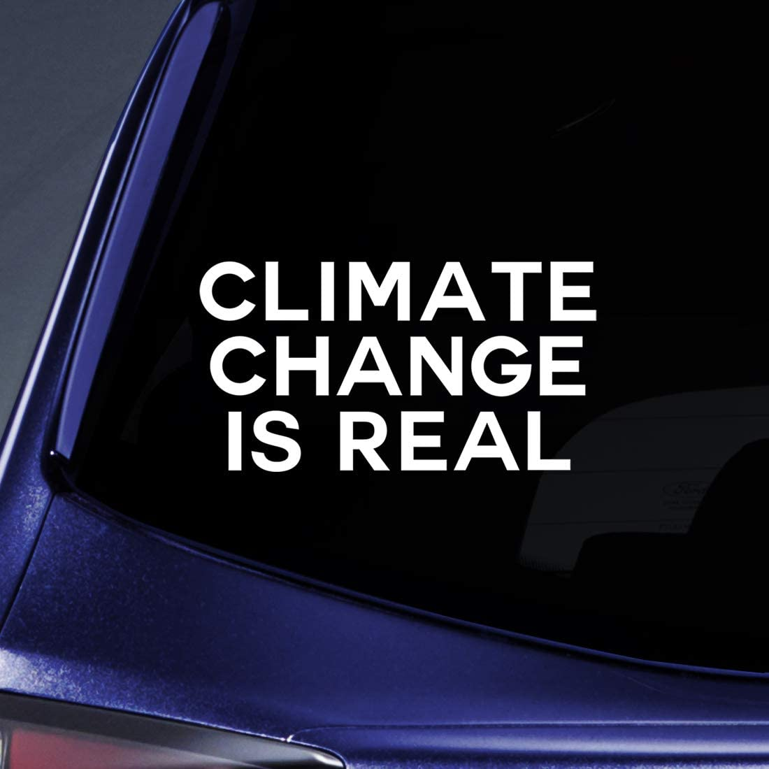 "Climate Change is Real Sticker Decal Notebook Car Laptop 5.5"" (White)"