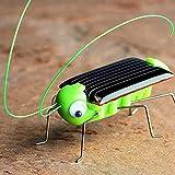 Flurries 🐞 3D Educational Solar Powered