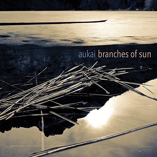 9 best branches of sun