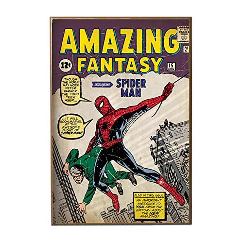 Silver Buffalo MC8536 Spiderman Fantasy First Appearance Wood Wall Art Plaque, 13 x19 inches ()