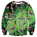 uideazone 3d Printed Cat Fly Shirt Teen Funny Ugly Christmas Sweater Sweatshirts Green Cat Green Asia S= US XS