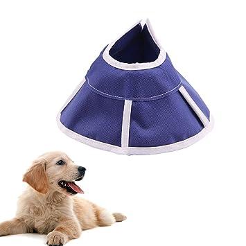 ASOCEA - Collar de recuperación ajustable para perros y gatos con cono, suave y cómodo, ...