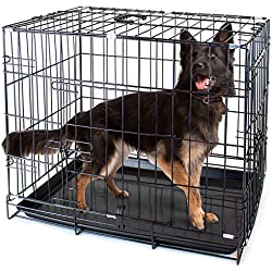 """Folding Metal Pet Crate with Removable Liner by Weebo Pets (XL - 42"""" x 28"""" x 30"""" Dual Door)"""