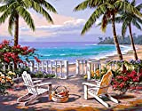 Morgofun DIY Oil Painting Paint by Numbers for Adults, Paint by Number Kit with Frame Beautiful Hawali Scenery Oil Painting 16x20inch