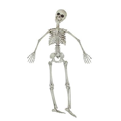Northlight - Esqueleto para Colgar en Halloween, Color Crema: Amazon ...