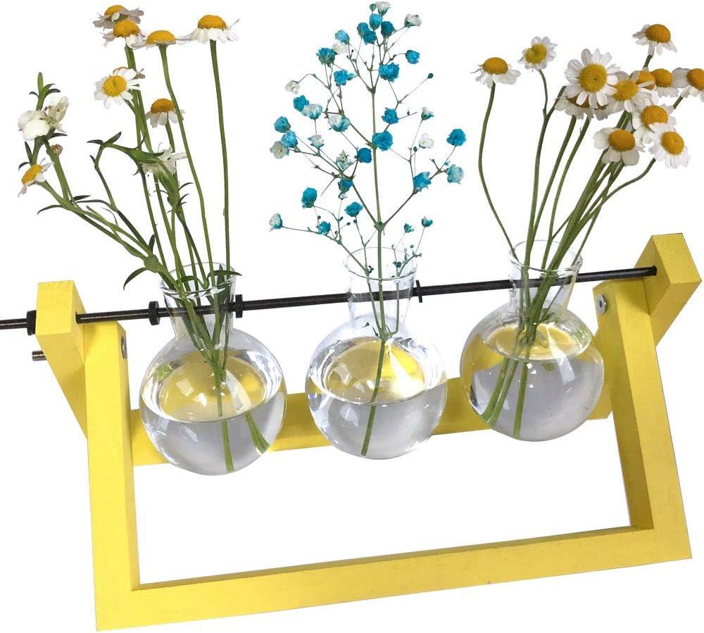 Patio, Lawn & Garden Terrariums ghdonat.com Chris.W Desktop Plant ...