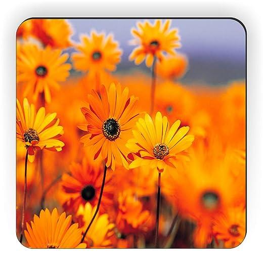 Rikki Caballero Naranja Flores sobre Fondo desenfocado diseño ...