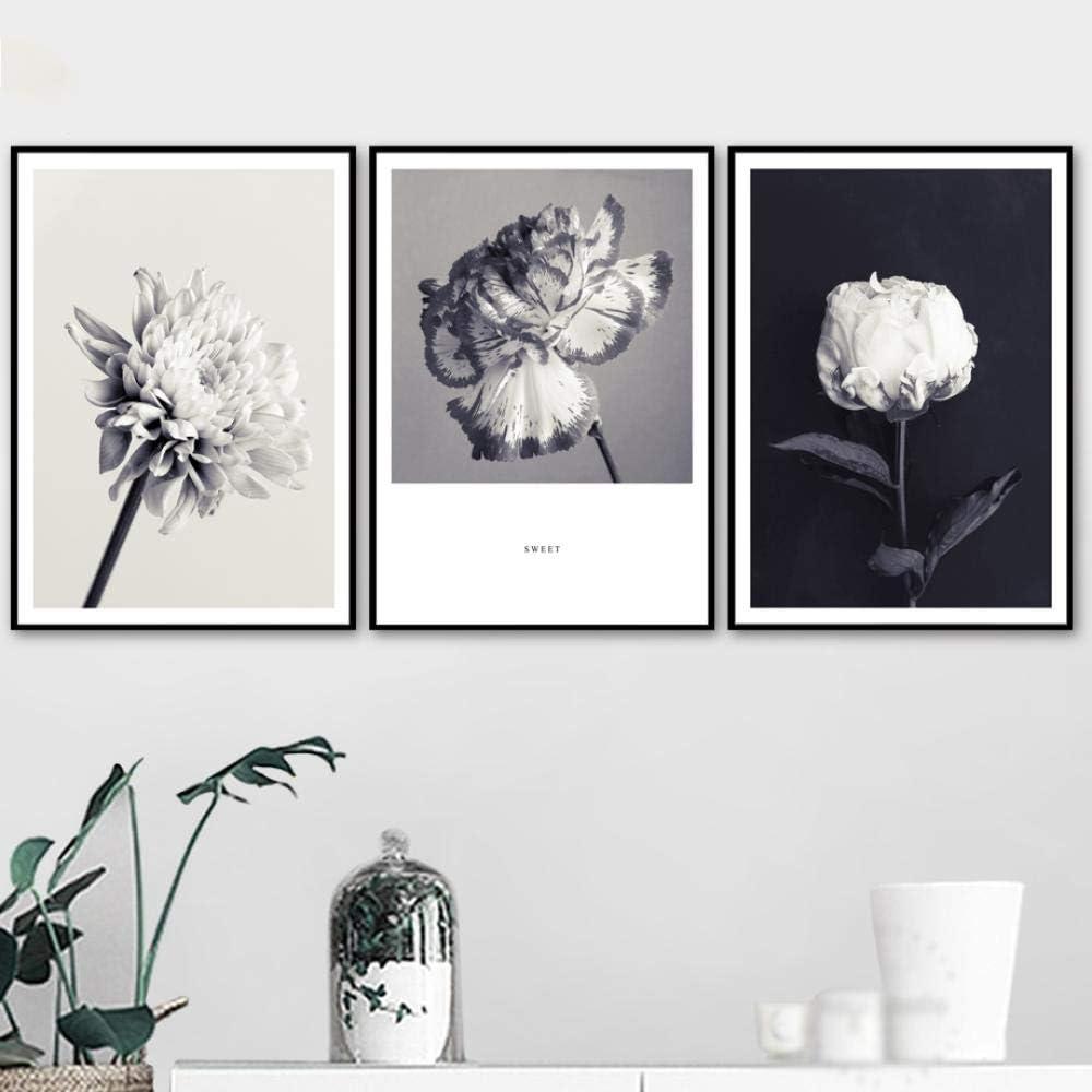 WADPJ Camelia Rosa crisantemo Flor Pared Arte Lienzo Pintura nórdica Carteles Impresiones Fotos Sala de Estar decoración del hogar-50x70cmx3 Piezas sin Marco
