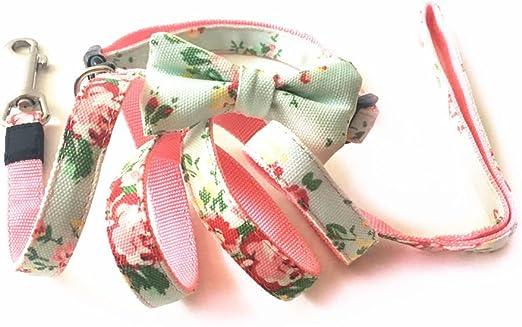 Joopet - Collar y correa de nailon con estampado de flores y ...