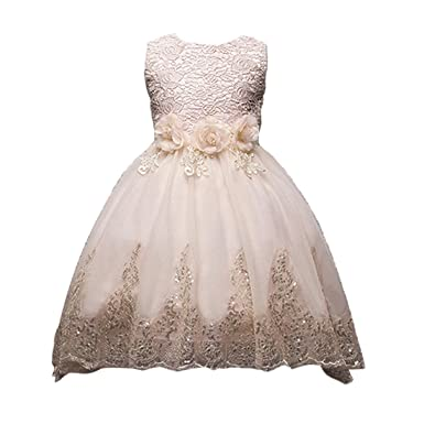 14b26905e7a26 子供 ドレス ガールズ ワンピース キッズドレス フラワードレス ノースリーブドレス 刺繍 結婚式 発表会 演奏