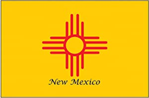 Flag Fridge Refrigerator Magnets - USA States N - Z (12-Pack, State: NM New Mexico)