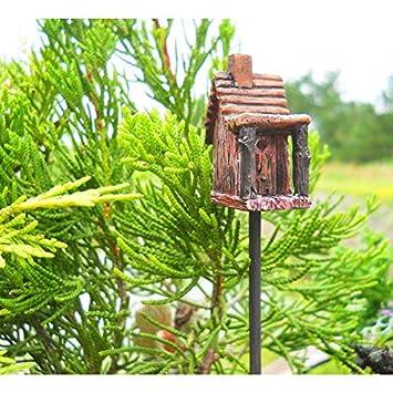 Amazon.com: Jardín de hadas en miniatura Mini Birdhouse ...
