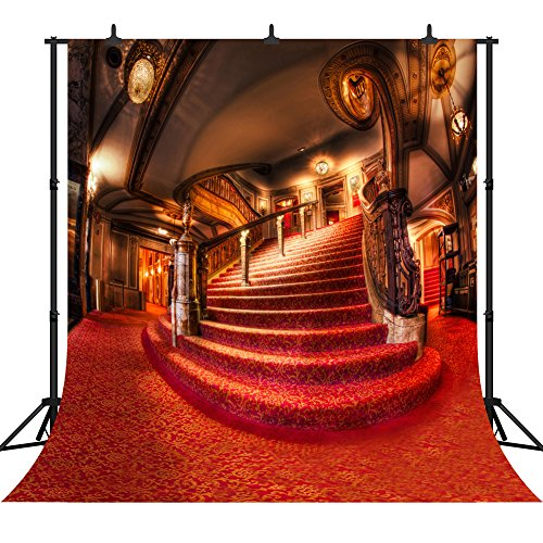DePhoto 10x10Ft Indoor Red Carpet Staircase Seamless Vinyl Photography Backdrop Photo Background Studio Prop PGT003
