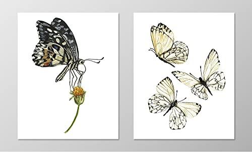 8x10 Original Butterfly Watercolor Painting