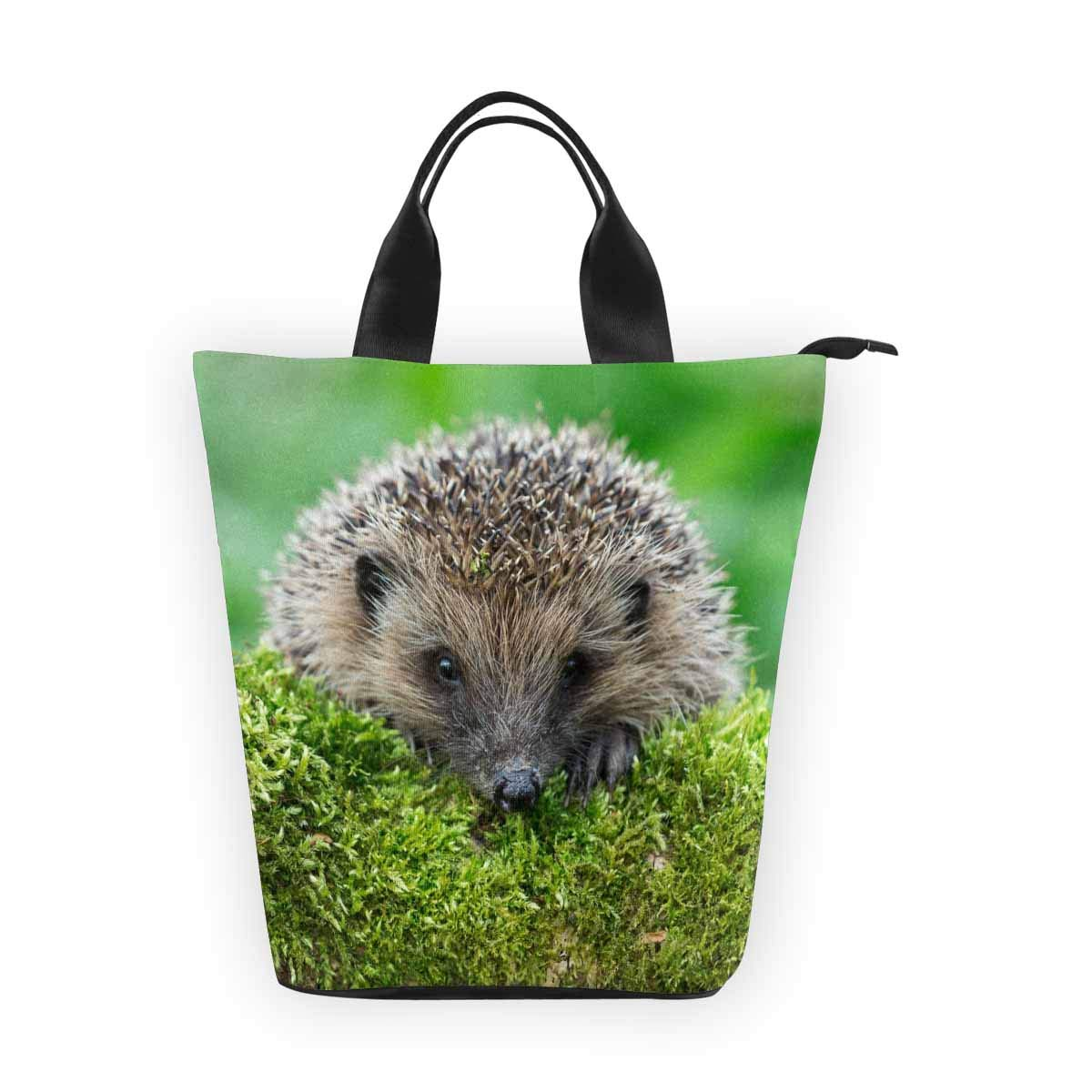 InterestPrint Nylon Cylinder Lunch Bag Funny Animal Hedgehog Tote Lunchbox Handbag