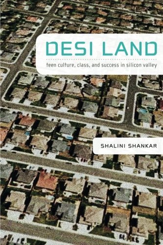 Desi Land: Teen Culture, Class, and Success in Silicon Valley
