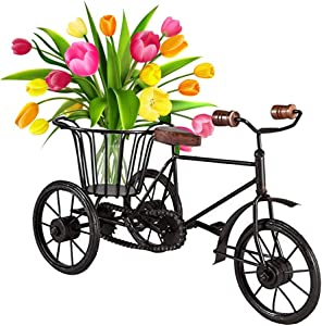 sdshopping Home Decorative Metal Rickshaw Cycle Showpiece Flower Vase
