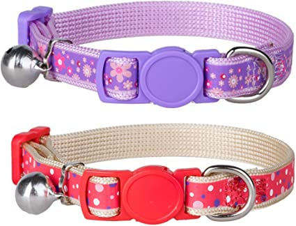 Colorful Owl Birds Breakaway Safety Kitty Cat Collar with removable bell!