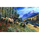 Elk Anthem 1000 pc Jigsaw Puzzle