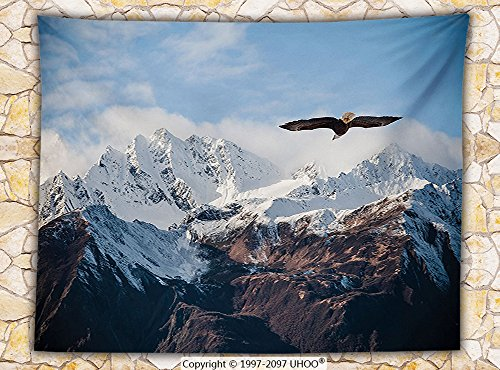 Apartment Decor Fleece Throw Blanket Frozen Peaks Tops of the Mountain with a Flying Eagle Free in the Nature Photo (Elvis Eagle Cape)