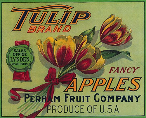 Lynden, Washington - Tulip Apple Crate Vintage Label (9x12 Fine Art Print, Home Wall Decor Artwork Poster)