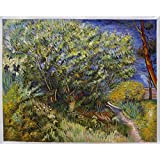Lilac Bush - Vincent Van Gogh High Quality Hand-painted Oil Painting Reproduction (28.7 X 36.2 In.)