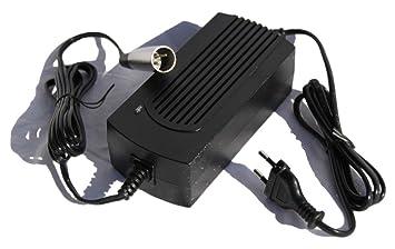 SXT cargador 36 V 1600 MA: Amazon.es: Electrónica