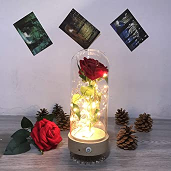 Eternal Rose Glass Dome Light Recargable Spinning Música ...