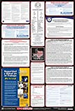 Accuform PPG400NY Safety Recognition Specialty COMBO STATE FEDERAL & OSHA LABOR LAW POSTER State: New York Spanish 40x27