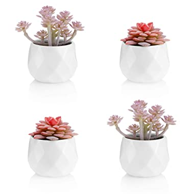 Viverie Artificial Succulent Plants in White Ceramic Pots for Desk, Office, Living Room, and Home Decoration - Faux Plant Included - Set of 4