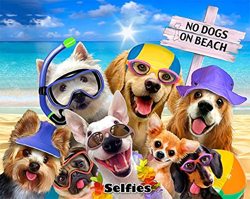 JGR Copa No Dogs On The Beach Selfie Yorkie Golden Lab Pug Snorkeling 54x68 Cotton Velour Beach Blanket Towel ()