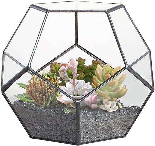 2 x Violet 30 cm Jardin Intérieur Plante Pot Couvre Planters Herb bacs boîte de fenêtre