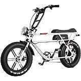 Addmotor MOTAN Electric Bike 750W 48V 16Ah Lithium Battery Pedal Assist 20 Inch Fat Tire 85% Assembled Comfort M-70 P7…