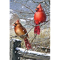 Toland Home Garden Blizzard Buddies 12.5 x 18 Inch Decorative Winter Cardinal Bird Garden Flag