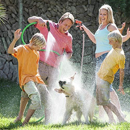 DCLYSI 50ft Expandable Garden Hose,Flexible Flat Garden Hose for Yard Car Wash Cleaning Watering Lawn Garden Plants (50 ft)