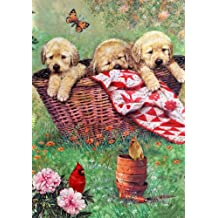 """Puppy Basket Dog House Flag Cardinals Butterfly Dogs Pets Flower 28"""" x 40"""""""