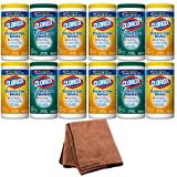 Clorox Disinfecting Wipes Value Pack, Fresh Scent and Citrus Blend, 225 Count (Packaging May Vary), 4-Pack with Cleaning Cloth