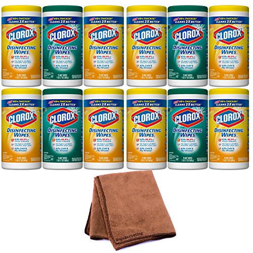 Clorox Disinfecting Wipes Value Pack, Fresh Scent and Citrus Blend, 225 Count (Packaging May Vary), 4-Pack with Cleaning Cloth by Clóróx Disinfecting Wipes