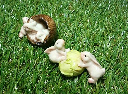 - Mini Cute Rabbits with cabbage for Mini Fairy Garden (2pcs)